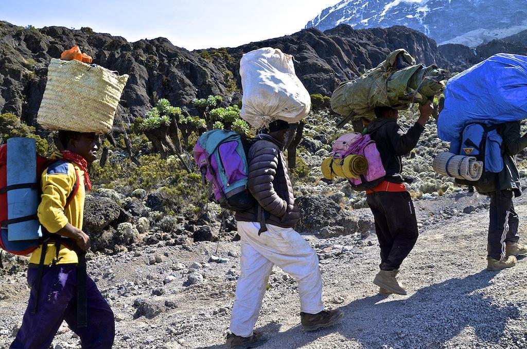 Kilimanjaro INFORMATION